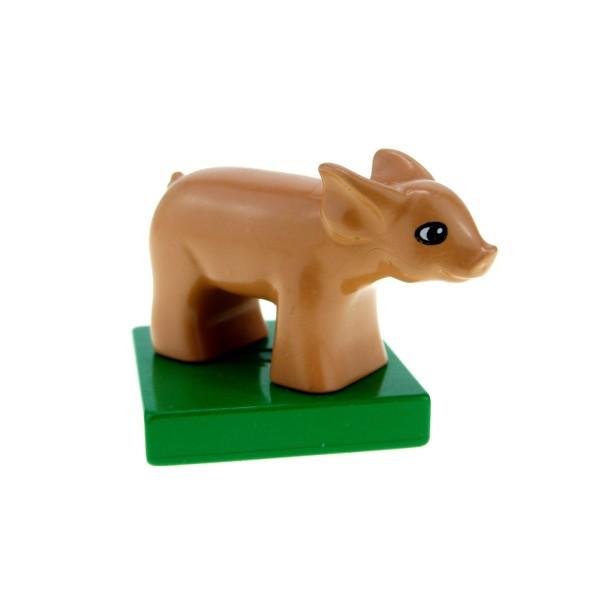 1 x Lego Duplo Tier Schwein Ferkel hautfarben grün kleine Sau auf Sockel Platte Pig Baby für Set Bauernhof 4972 75726 75726c01pb01